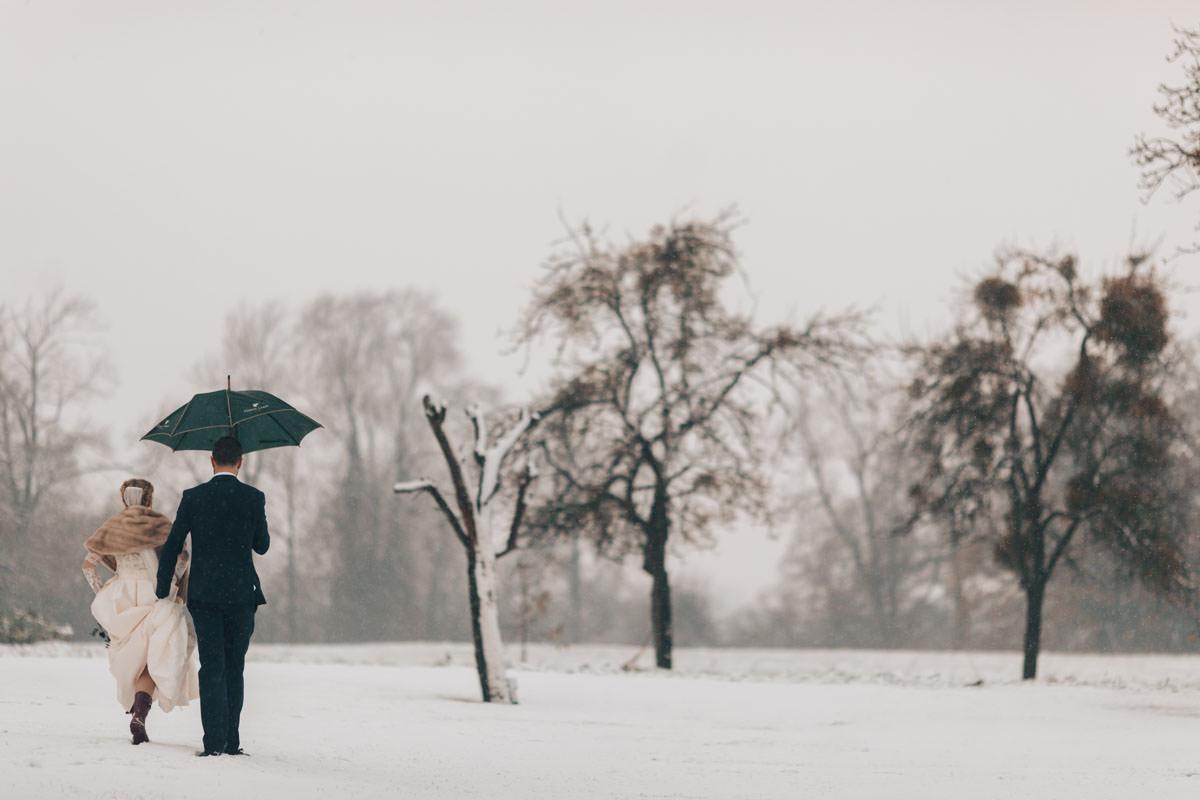 snow at Elmore Court